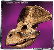 Heritage Award winning catalog cover design